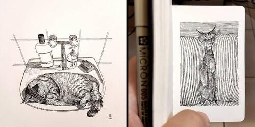 00-World-of-Cats-Alberto-Russo-www-designstack-co