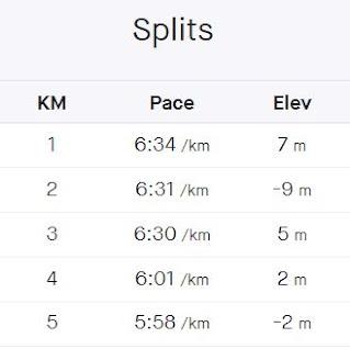 Chart showing 1km split times