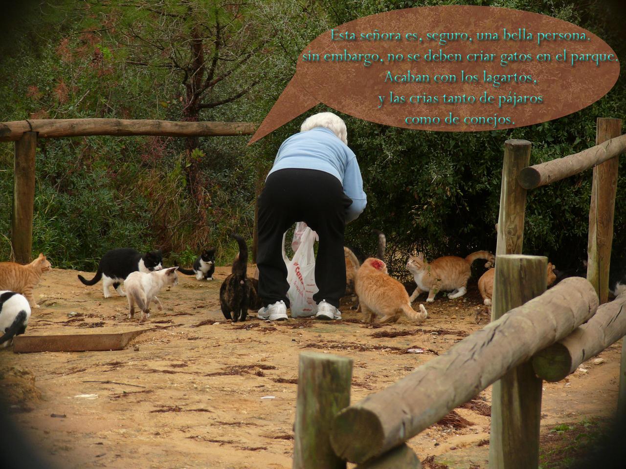 Octubre 2011: GUADAIRAJABEN: Octubre 2011