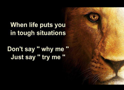 Lion Quotes About Being Strong