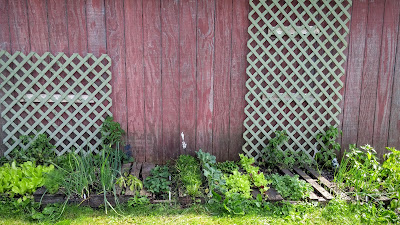 April's Country Life: My Pinterest Pallet Garden - Year 4