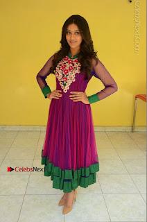 Actress Pooja Jhaveri Latest Stills in Purple Salwar Kameezt at Dwaraka Success Meet  0245.JPG