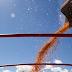 Economia IBGE: estimativa de safra cai pelo quinto mês seguido