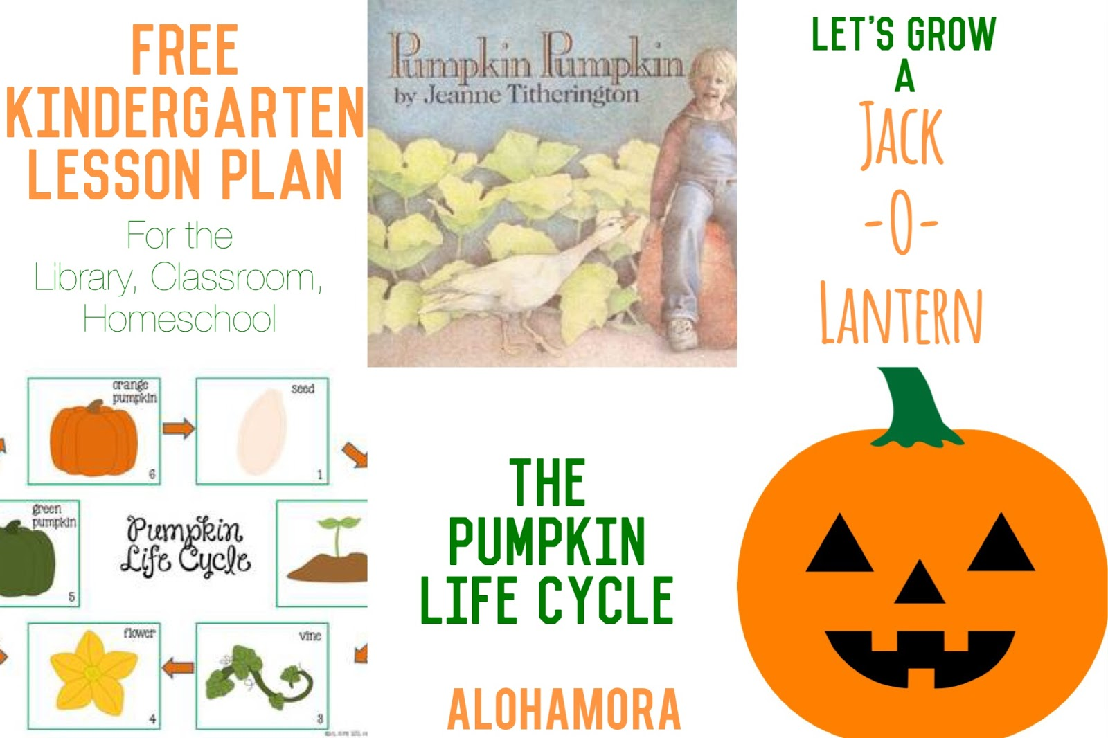 Alohamora Open A Book Favorite Fall And Halloween