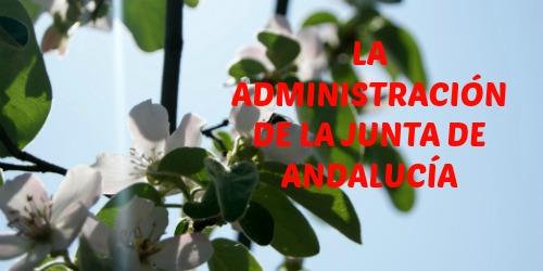 Administración de la Junta de Andalucía
