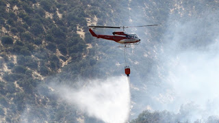 Pese a medidas de prevención: Más de 30 incendios forestales afectaron el sur del país durante fin de semana