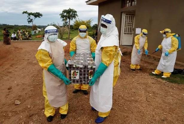 Pakar Lingkungan: Umat Manusia Akan Hadapi Pandemi Baru Mematikan