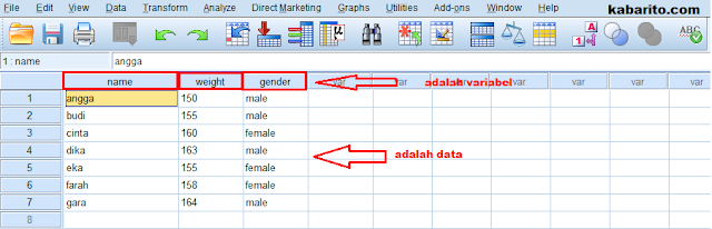 menginput data di data view spss