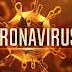 Koronavirüs Türkiye'ye böyle yayıldı!