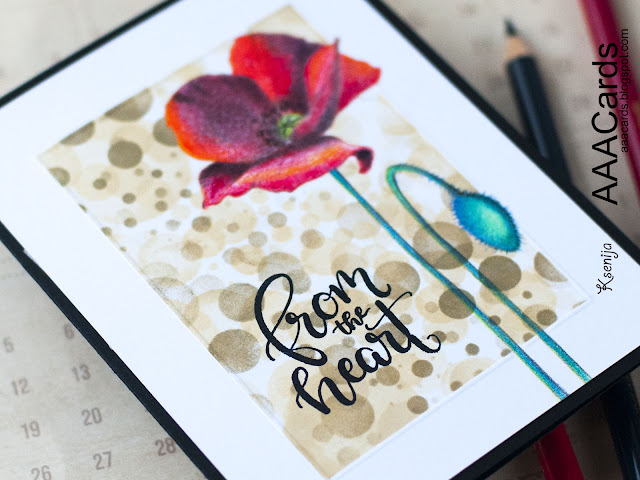 Pencils Coloured Pure Poppies from Create A Smile