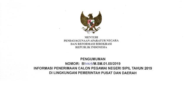 CPNS 2019