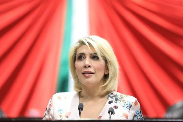 Propone Norma Guel expedir la Ley del Fondo para el Fomento para el Desarrollo de los Jóvenes Emprendedores