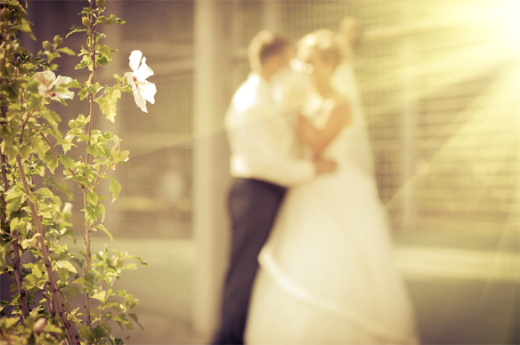 Christ and the Church—The Model for Marriage