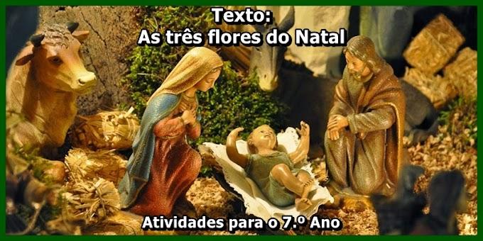 As três flores do Natal - Atividades de Língua Portuguesa para o 7.º Ano