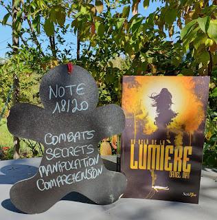 https://www.leslecturesdemylene.com/2019/10/au-dela-de-la-lumiere-daniel-mat.html