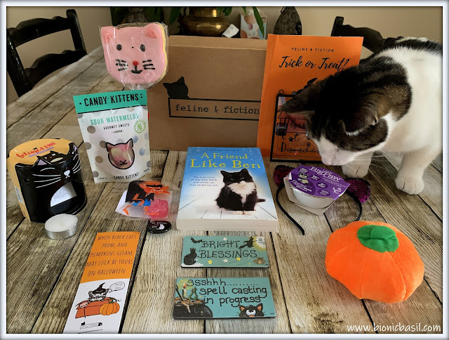 Book Reviews with Amber  #142 ©BionicBasil® Feline & Fiction October Box Reveal