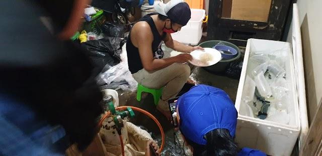KKP-Dit Polair  Berhasil Bekuk Pengepul Benih Lobster di Pandeglang