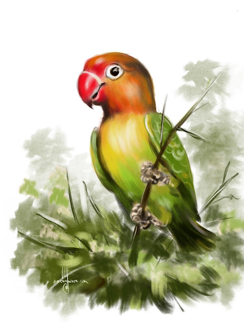 Fischer's Lovebird bird painting by Artmagenta