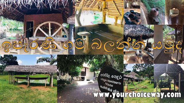 ඉපැරණි ගම බලන්න යමුද ❤️🌱🌸🍃🍄🎋 (Let's Go See The Ancient Village)