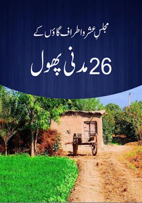 Download: Majlis e Ushar-o-Atraf Gaoun k 26 Madani Phool pdf in Urdu