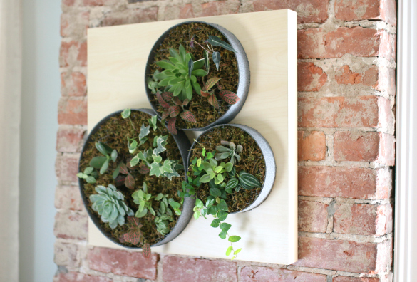 Wall Garden The Lack Table Acts As Birch Backed Base We Used A Textured Stone Spray On Sonos Which Encase Tiny Succulents And Chain