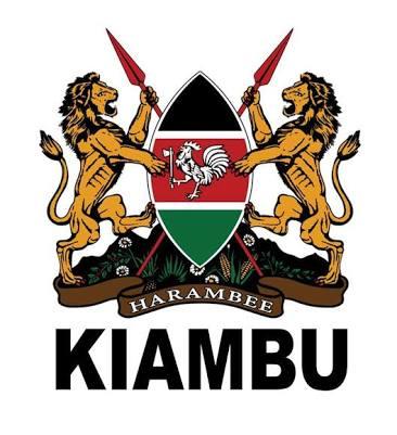 Accountant jobs Kiambu County Government 2019