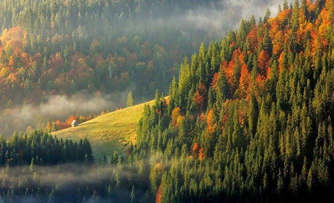 canh dep Romania 10