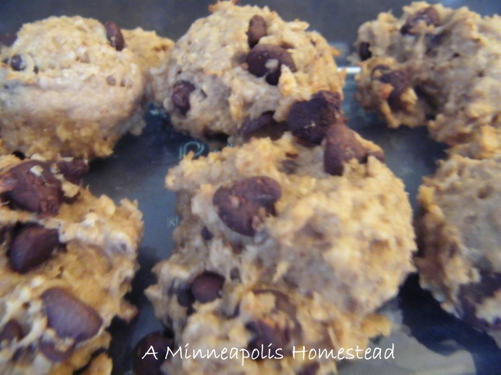 High Protein Banana Chocolate Chip Breakfast Cookies Recipe Healthy