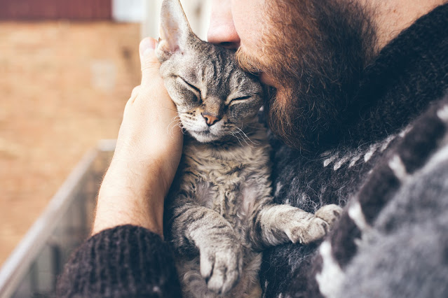 A bearded man cuddles and kisses a relaxed cat