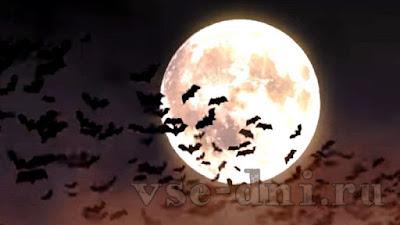 когда будет Хэллоуин в России