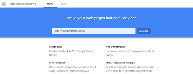 PageSpeed Insight