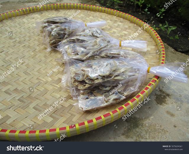 stock-photo-traditional-salted-fish-industry-caught-by-local-fishermen-in-subang-regency-west-java-indonesia-1875634561
