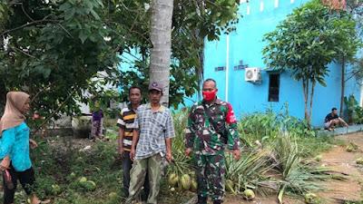 Penjual Kelapa Muda Nikmati Fasilitas Jalan yang Baru Dibangun oleh Satgas TMMD ke-111 Kodim 1207/Pontianak