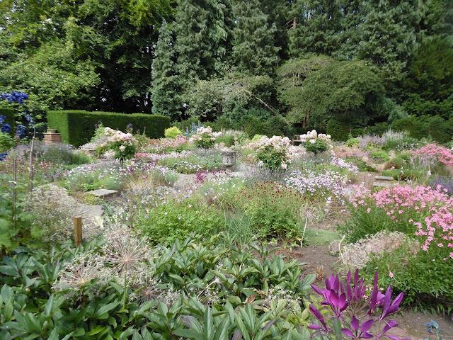 english garden, ogród bylinowy