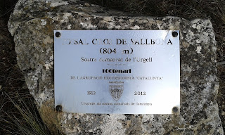 Tossal Gros de Vallbona - Sostre comarcal Urgell