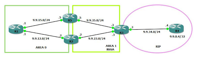 OSPF Forwarding Address
