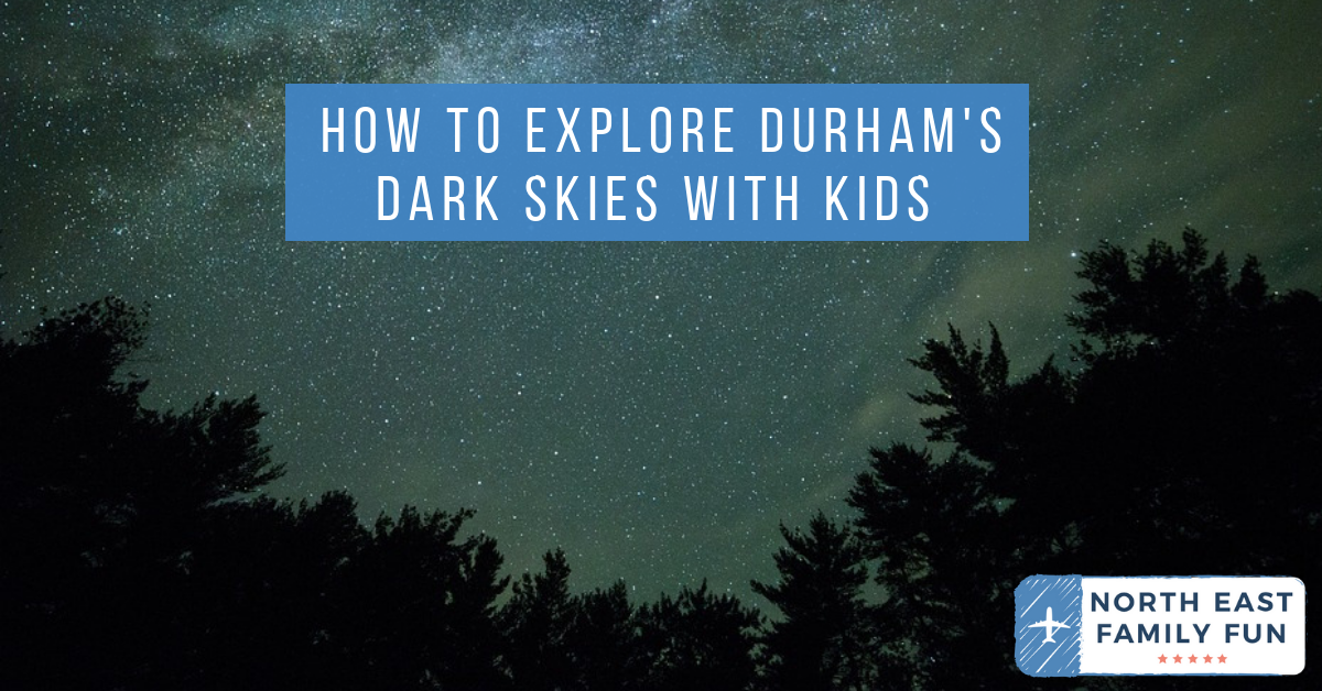 How to Explore Durham's Dark Skies with Kids this Autumn - dark sky map Hamsterley Forest
