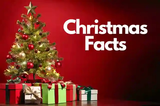 70+ Facts About Christmas In Hindi That You didn't Know