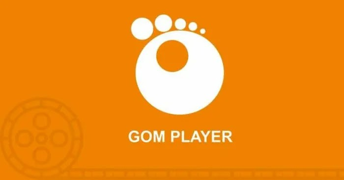 Best Video Player Program GOM