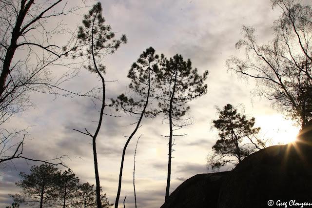 Les trois frères, Rocher du Potala, Trois Pignons, Fontainebleau