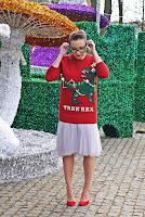 http://www.karyn.pl/2017/12/tree-rex-swiateczny-sweterek-i-tiulowa.html