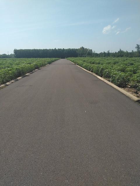 Hàng khủng chỉ dành cho Nhà Đầu Tư Chiến Lược - 74 tỷ - 2 mẫu rưỡi, diện tích lớn xã Long An, Long Thành, Đồng Nai