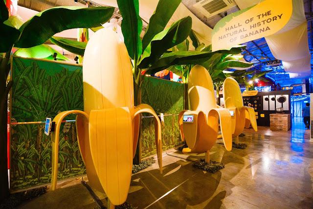 hall of the natural history of banana