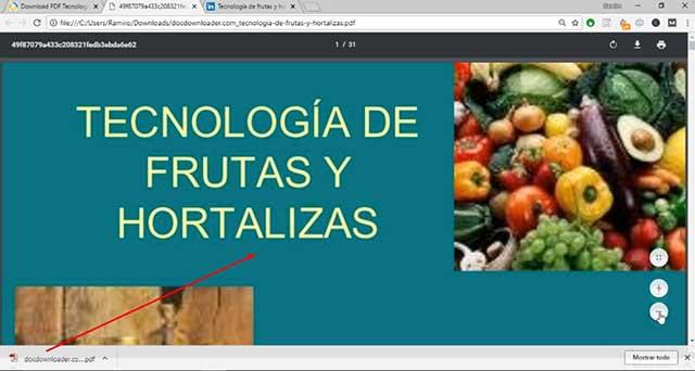 diapositiva en formato pdf