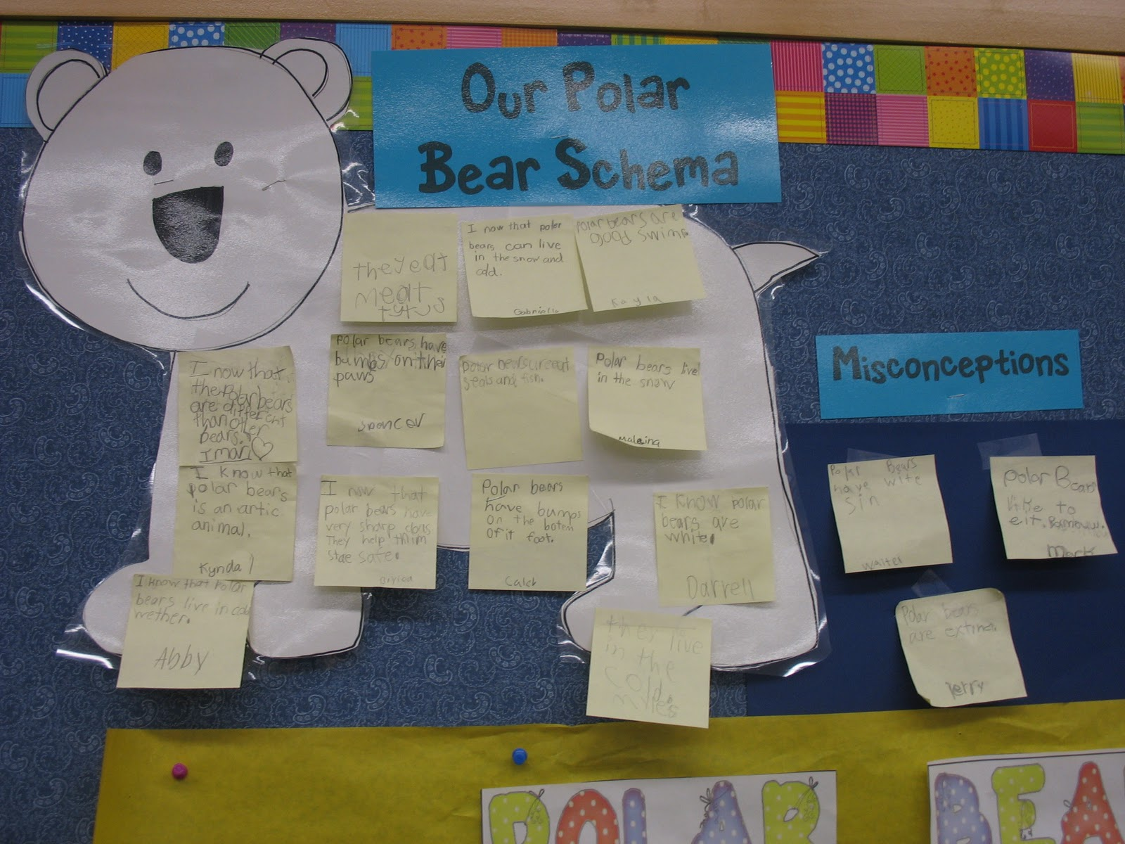 Cause And Effect Polar Bears And Freebies For You