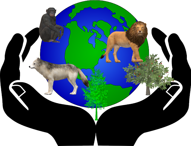 World Wildlife Day theme 2020 Sustaining all life on earth