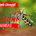 Rawat Demam Denggi Dengan Tingkatkan Imunisasi Diri