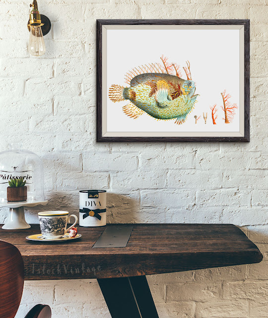 Etsy deep sea fish digital download