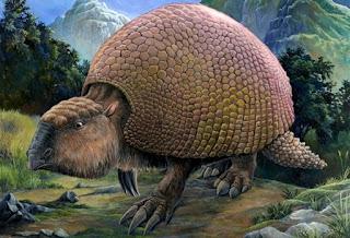 mamiferos gigantes blog