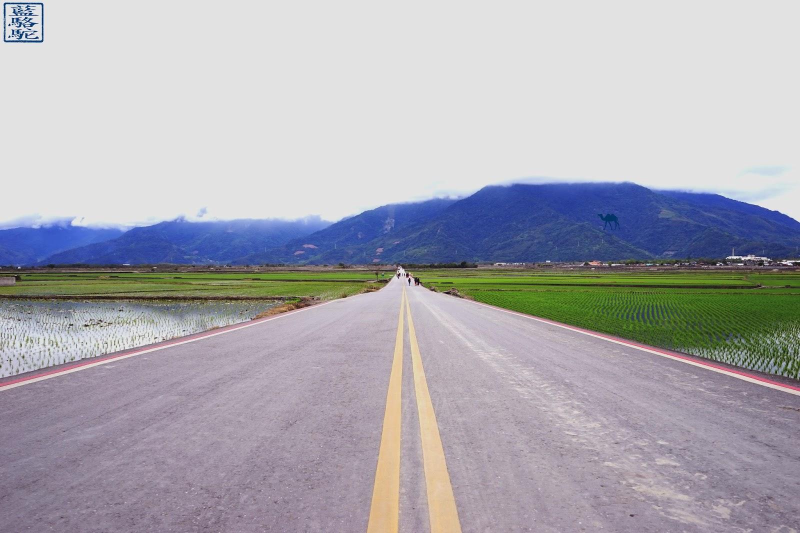 Le Chameau Bleu - Route à l'infini - Voyage à Taiwan - Promenade à vélo dans les rizières